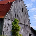 Indiana_barn Travel Photography