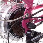 Beautiful Electric Bikes
