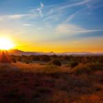 Desert At Sunrise